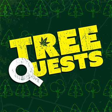 Icon for TreeQuests